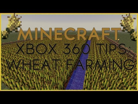 Minecraft Xbox 360 Tips, Tricks, and Games  | Minecraft How to Grow Wheat