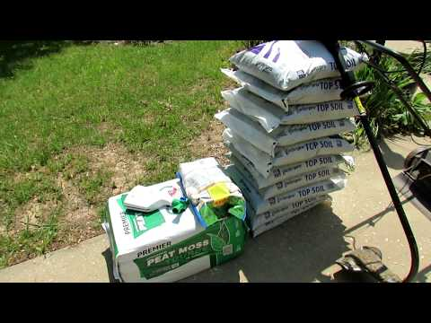 How to Properly Seed Your Lawn, Addressing Tree Roots, Making a Patch Mix: The Cheapest Way!