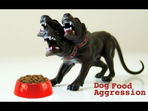 Dog Food Aggression