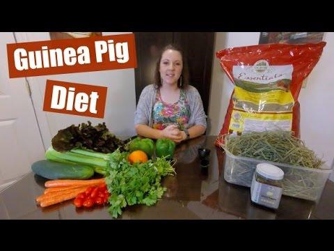 My Guinea Pigs' Diet (Low Calcium)