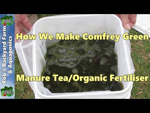 How we make comfrey green manure tea/organic fertiliser..