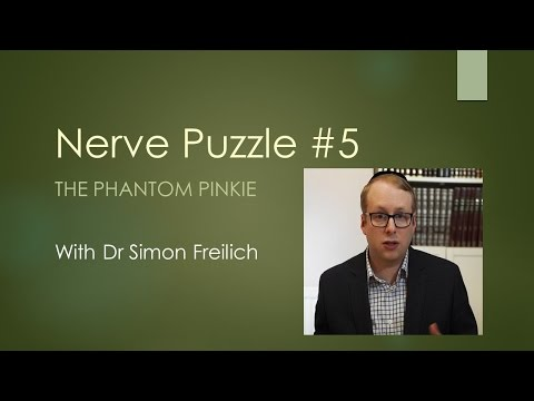 Nerve puzzle 5 - The phantom pinkie - The Neurophysiology assessment of Thoracic Outlet Syndrome