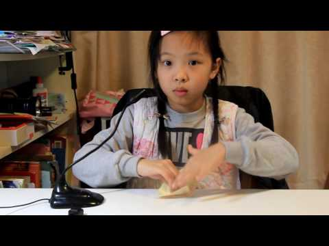 How to make an origami crane, paper kingdom,  paper folder