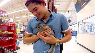 Download MY FiRST PET EVER!! Video