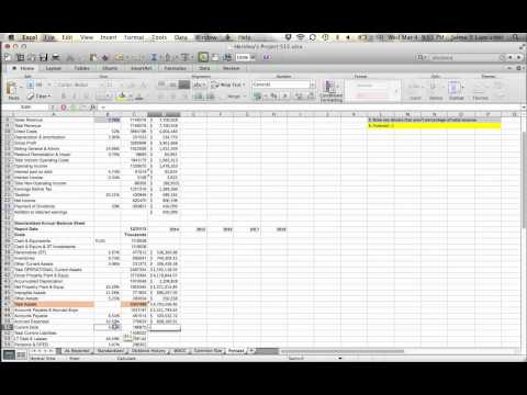Project S15 - Forecasting the Balance Sheet