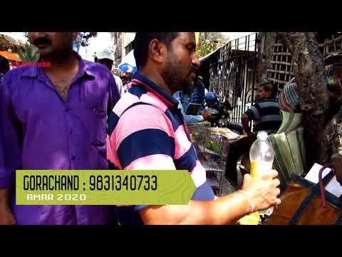 GALIFF STREET EXOTIC BIRD MARKET KOLKATA INDIA | 27TH MAY 2018 VISIT | BIRD SELLER NUMBER