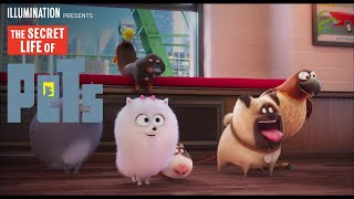 The Secret Life of Pets - Chris Melandri - Own it on Digital HD 11/22 on Blu-ray/DVD 12/6