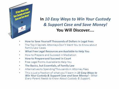 How to Win Child Custody & Child Support Case and Save Money