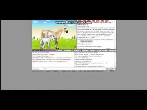 Horse Isle 1: Horse Capture and my horses so far