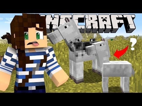 Minecraft's New Horses! - StacyPlays Honest Reaction