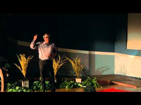 How To Ask Good Questions: David Stork at TEDxStanleyPark