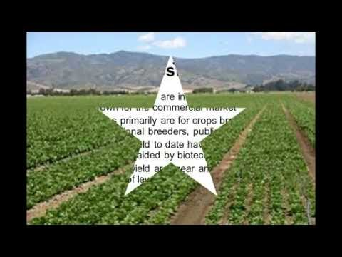 new innovations in agriculture - how to increase crop yield