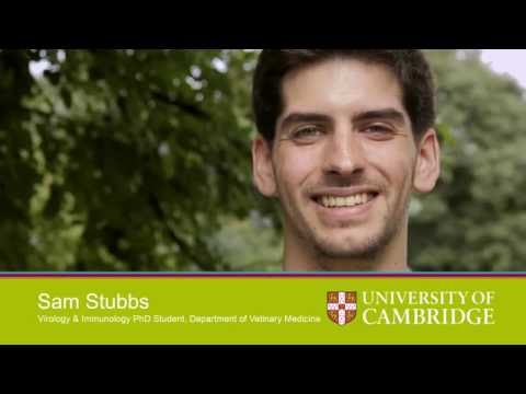 Entry Requirements: Postgraduate Study at Cambridge Myth Busting