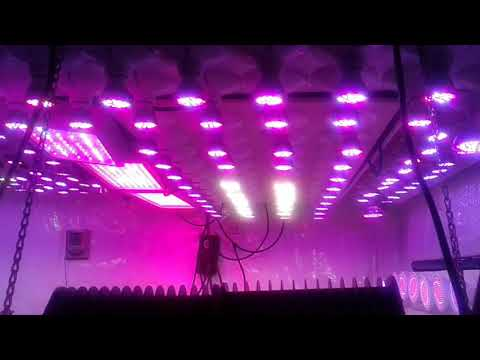 E27 FULL SPECTRUM LED grow lights, and various other lights LEDs ARE THE FUTURE OF LIGHTING NEEDS