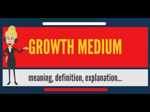 What is GROWTH MEDIUM? What does GROWTH MEDIUM mean? GROWTH MEDIUM meaning & explanation