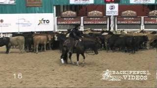 One Time Royalty - NCHA Super Stakes Open Classic Finalist, 3rd