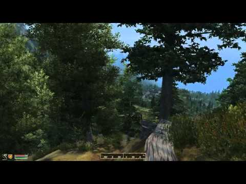 Elder Scrolls IV Oblivion: The Best Path in the Game