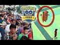 What REALLY Happened at Pokemon GO Fest
