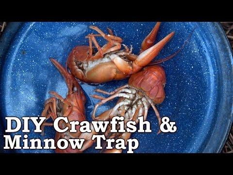 $7.50 DIY Minnow/Crawfish Funnel Trap - Bob Hansler Design