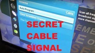 FREE LIVE TV CHANNELS 🔥USTV247🔥 - PakVim net HD Vdieos Portal