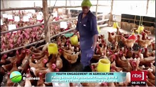 Youth Engagement in Agriculture: Poultry Farming| NBS Agribusiness