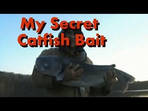 my secret Catfish Bait make it for less than 3 dollars