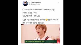 Stray kids memes and vines to make you the coolest kid on