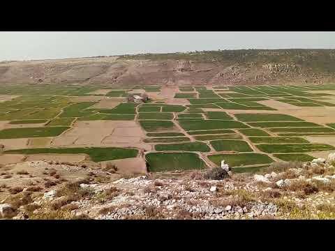 Beautiful scene of Fields
