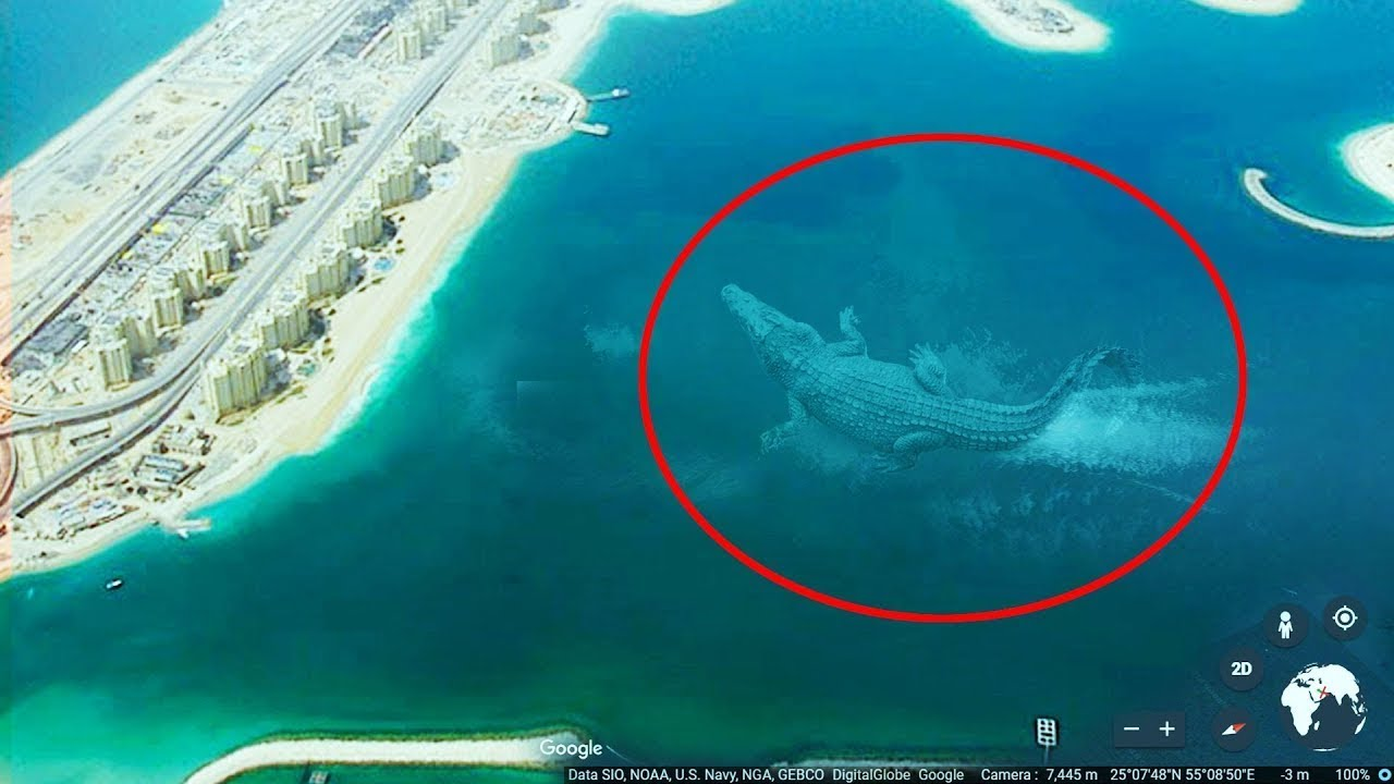 10 Mysterious Deep Sea Creatures Spotted On Google Earth