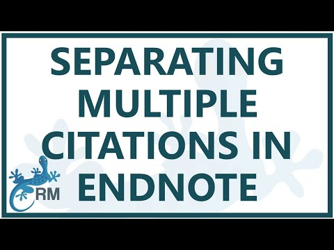 Endnote: separating multiple citations in the same set of brackets