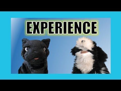 Experience:  George the Self Esteem Cat