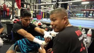 Robert Garcia Floyd Mayweather Will Ko Mcgregor In 2 To 3 Rds - Esnews Boxing