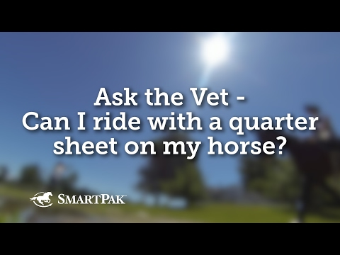 Ask the Vet - Can I ride with a quarter sheet on my horse?