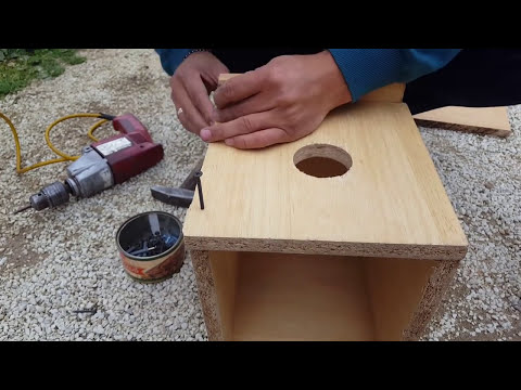 How To Make Simple Birds Cage - Make your Birds Happy DIY ( Creative Ideas )