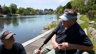 Download Cliff Smith Interview at Redd's Pond, Marblehead, MA. May 2018 Video
