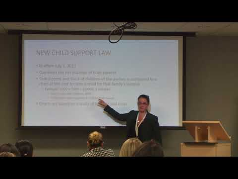 LAF domestic violence training: Parenting, support, and divorce