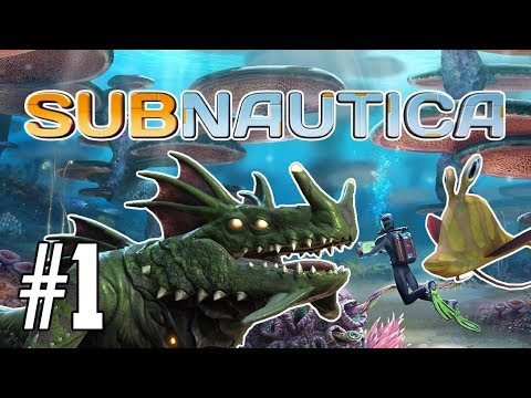 FLYING IN SUBNAUTICA! You won't believe it!   Subnautica EP 1   PC Gameplay