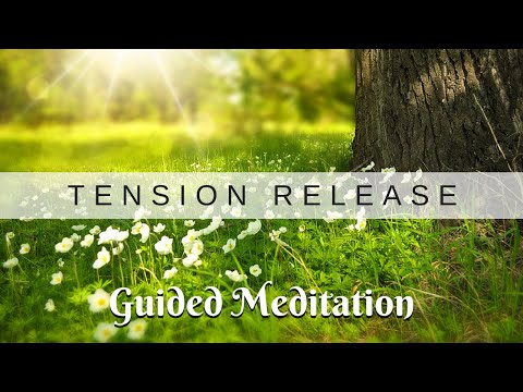STRESS BUSTER! - Guided Meditation & Exercise to Release Tension & Stress