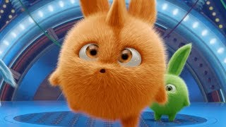Cartoons for Children   Sunny Bunnies - TURBO IN THE SPOTLIGHT   Funny Cartoons For Children