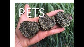 Receita da Sophie: Agradinho Saudável para Pets