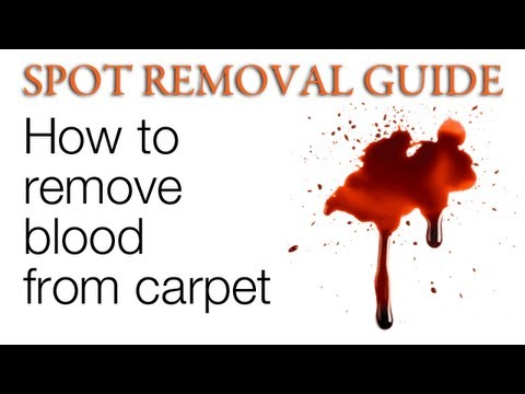How to Get Blood out of Carpet | Spot Removal Guide