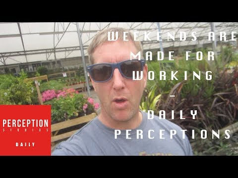 WEEKENDS ARE MADE FOR WORKING | DAILY PERCEPTIONS | DAY 35