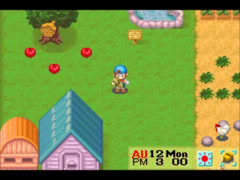 Let's Play Harvest Moon: Friends of Mineral Town 41: Harvest Moon