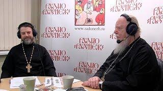 Радио «Радонеж». Протоиерей Димитрий Смирнов. Видеозапись прямого эфира от 2017.11.18