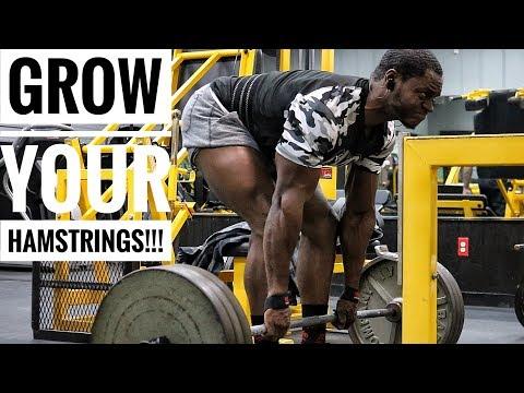 Complete Hamstring Workout For Bigger Stronger Hamstings | Raw Gym Footage
