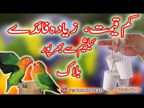 how to make calcium block for birds, and whats are its benefits. Calcium block kaisay banta hay. v