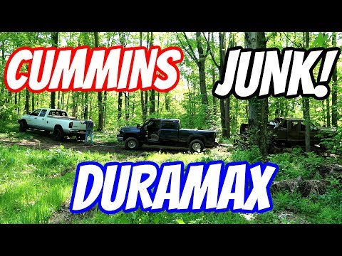 Extreme Junk Yard Dogs