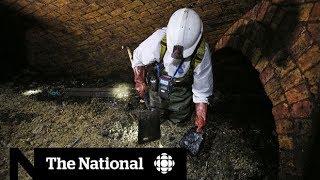 Fatberg clogging London sewers