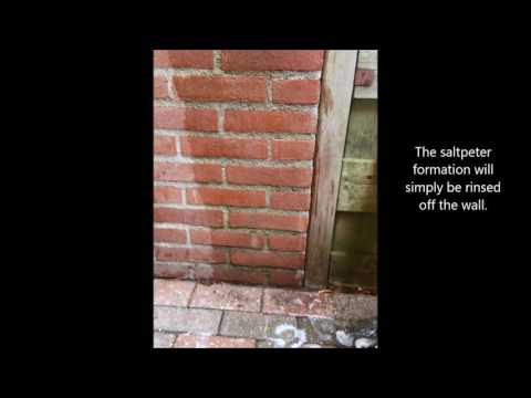 Use EcoCal to remove limescale and white stains from walls, facades and bricks