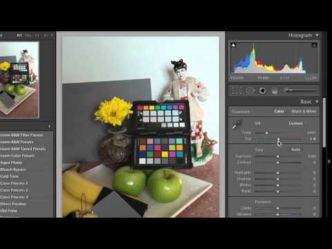 Lesson 22 -  How to Correct White Balance with Grey Card in Lightroom and Camera Raw